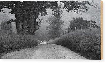 Winding Rural Road Wood Print by Andrew Soundarajan