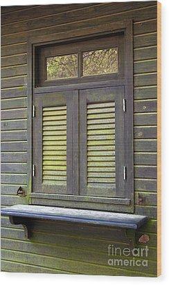 Window And Moss Wood Print by Carlos Caetano