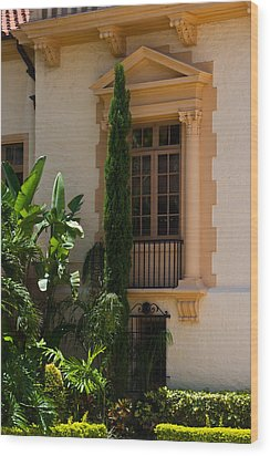 Wood Print featuring the photograph Window At The Biltmore by Ed Gleichman