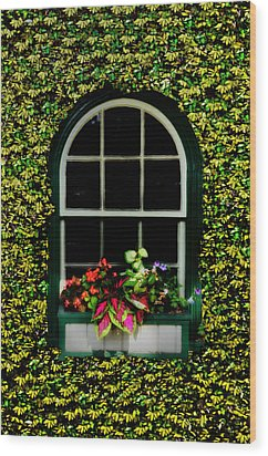 Window On An Ivy Covered Wall Wood Print by Bill Cannon