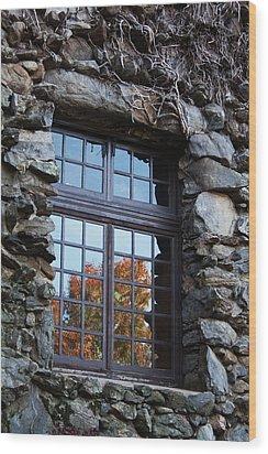Window To The World Wood Print by Sandi Blood