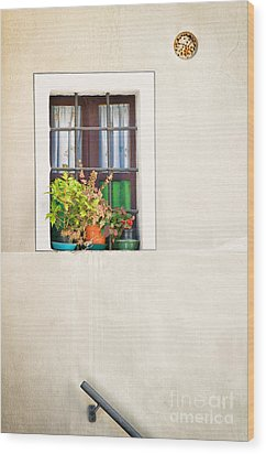 Window With White Frame And Vases Wood Print by Silvia Ganora