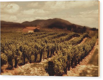 Wine Country Wood Print by Peter Tellone