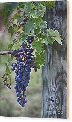 Winery Harvest Wood Print by Vicki DeVico