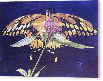 Wings Wood Print by Karen Casciani