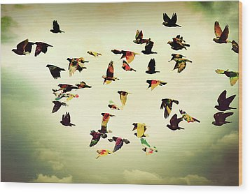 Wings Of Colors Wood Print by Manuel Orero Galan