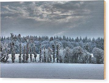 Winter At France Wood Print by Dominique Guillaume est un Auteur-Photographe