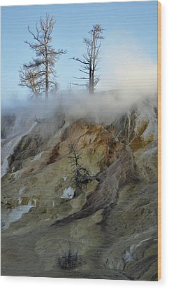 Winter At Yellowstone's Mammoth Terrace Wood Print by Bruce Gourley
