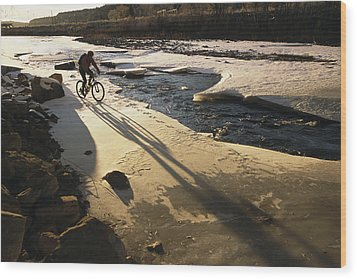 Winter Bicycling On The Partially Wood Print by Kate Thompson