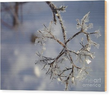 Winter Crystals Wood Print by Susan Fisher