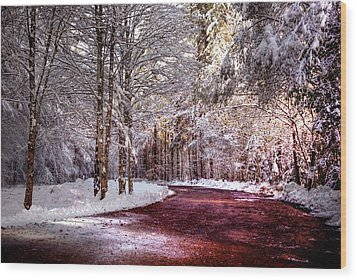 Winter Drive Wood Print by Anthony Citro