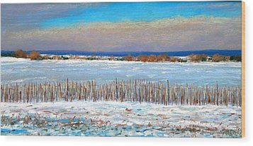 Winter Fields With Snow Fence Wood Print by Bob Richey
