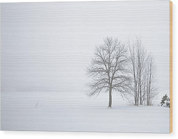 Winter Fog And Trees Wood Print