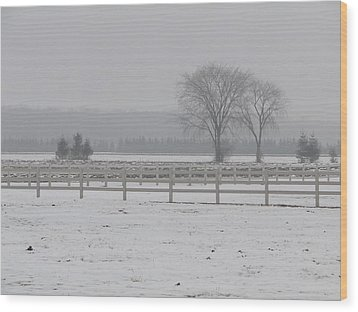 Wood Print featuring the mixed media Winter Fog On The Paddocks by Bruce Ritchie