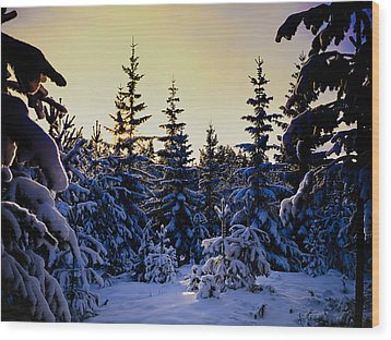 Winter Forest Wood Print by Hakon Soreide