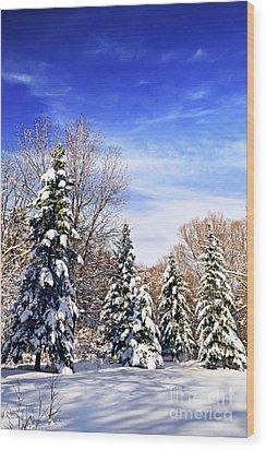 Winter Forest Under Snow Wood Print by Elena Elisseeva