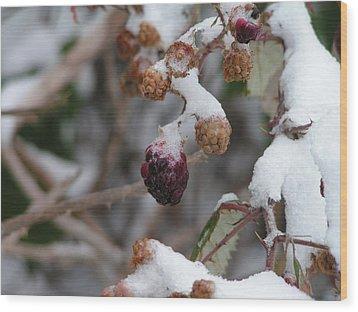 Winter Fruit Wood Print by Rand Swift