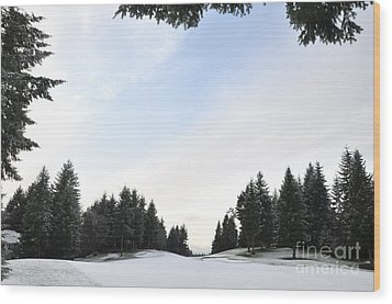 Winter Golf Course  4 Wood Print by Tanya  Searcy