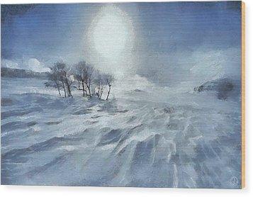 Winter Wood Print by Gun Legler