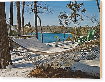 Wood Print featuring the photograph Winter Hammock by Susan Leggett