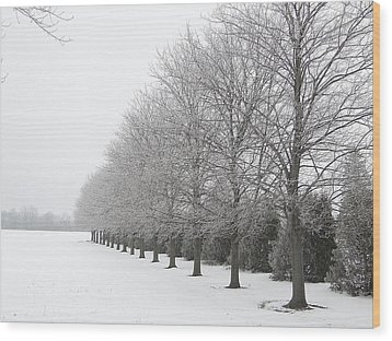 Wood Print featuring the mixed media Winter Hoar Frost On Trees by Bruce Ritchie