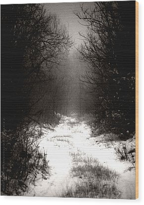 Winter IIi Wood Print by Mimulux patricia no No
