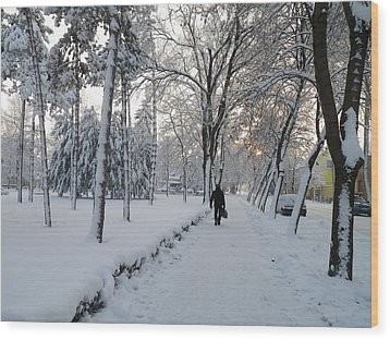 Wood Print featuring the photograph Winter In Mako by Anna Ruzsan