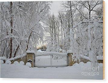 Winter Wood Print by Jan Daniels