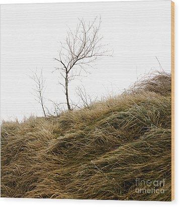 Winter Landscape Wood Print by Bernard Jaubert