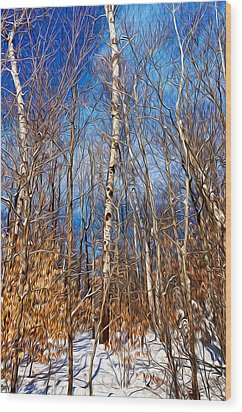 Winter Landscape I Wood Print by Celso Bressan