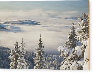 Winter Landscape With Clouds And Wood Print by Craig Tuttle