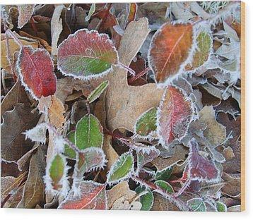 Winter Leaves Wood Print by Linda Pope
