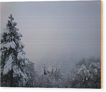 Winter Wood Print by Lucy D