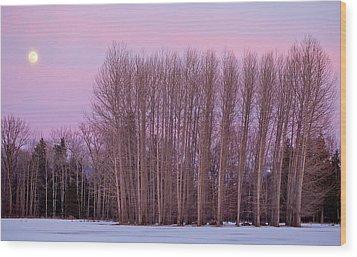 Winter Moon Wood Print by Marie-Dominique Verdier