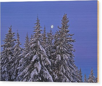 Winter Night Wood Print by Michele Cornelius