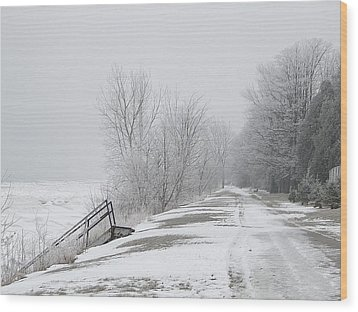 Wood Print featuring the mixed media Winter On The Old Lakeshore by Bruce Ritchie