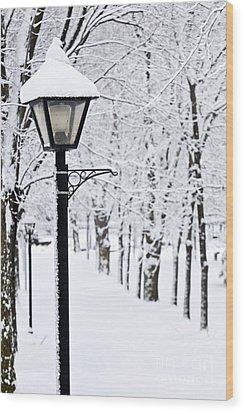 Winter Park Wood Print by Elena Elisseeva
