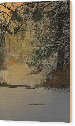 Wood Print featuring the photograph Winter Path by Mary Timman
