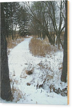 Winter Path Wood Print by Todd Sherlock