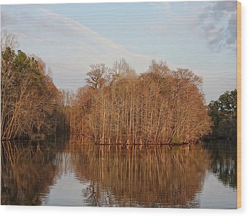 Winter Reflections Wood Print by Sandra Anderson