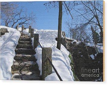 Wood Print featuring the photograph Winter Scene Of San Marino Castles  Pathway  by Alexandra Jordankova