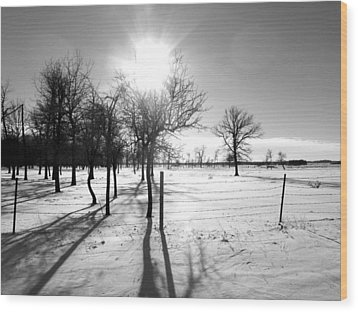 Winter Shadows Wood Print by Leanna Lomanski