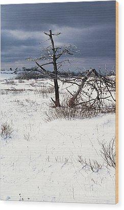 Winter Shenandoah National Park Wood Print by Thomas R Fletcher