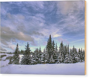 Winter Sky Wood Print by Michele Cornelius