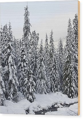 Winter Snow Scene Wood Print by Sylvia Hart