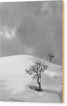 Winter Solitude Wood Print by Viktor Savchenko