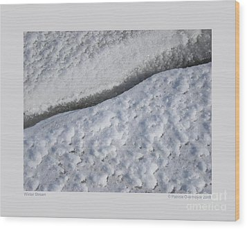 Wood Print featuring the photograph Winter Stream by Patricia Overmoyer