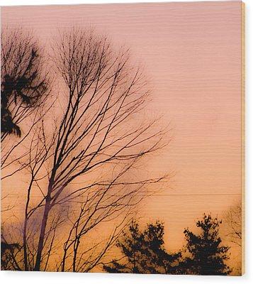 Winter Sunrise Wood Print by Laurie Breton