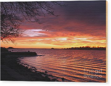 Winter Sunset Wood Print by Butch Lombardi