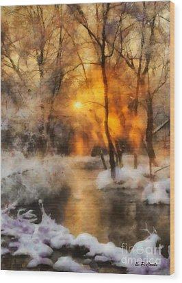 Winter Sunset Wood Print by Elizabeth Coats